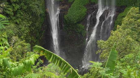 Waterfall in green rainforest. Triple waterfall Sekumpul in the mountain jungle. Bali,Indonesia. Travel concept.