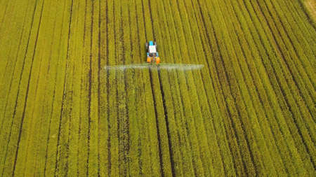 Aerial view tractor spraying the chemicals on the large green field. Spraying the herbicides on the farm land. Treatment of crops against weeds. Standard-Bild - 113329947