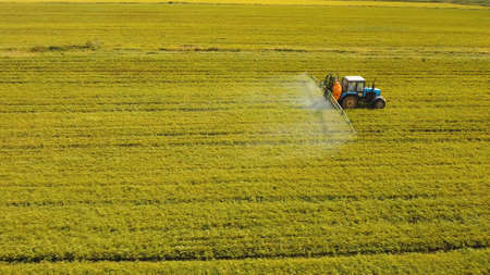 Aerial view tractor spraying the chemicals on the large green field. Spraying the herbicides on the farm land. Treatment of crops against weeds. Stock Photo