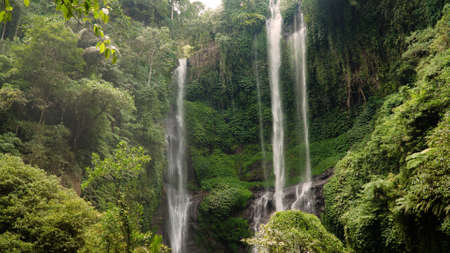 waterfall in green rainforest. triple tropical waterfall Sekumpul in mountain jungle. Bali,Indonesia. Travel concept. Aerial footage. Standard-Bild - 115257650