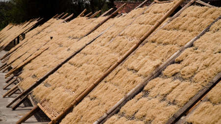 noodle drying in sun at noodle factory in indonesia Bantul, Yogyakarta, Indonesia Standard-Bild - 115257734