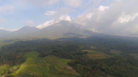 rural landscape with farmlands, rice terraces against mountains. Aerial view agricultural land on mountainside. tropical landscape Bali, Indonesia. Standard-Bild - 115258103