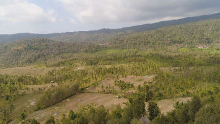 rural landscape mountains with farmlands, village, fields with crops, trees. Aerial view farm lands on mountainside. tropical landscape Bali, Indonesia. Standard-Bild - 115258603