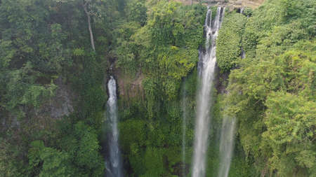 waterfall in green rainforest. Aerial view triple tropical waterfall Sekumpul in mountain jungle. Bali,Indonesia. Travel concept. Standard-Bild - 115258613