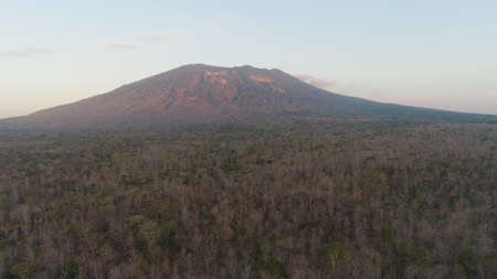 low growing tropical forest at foot mountain at sunset. aerial view mountains, forest with trees tropical landscape, Indonesia. Standard-Bild - 115258614