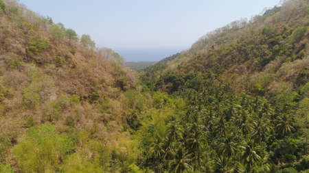 aerial view slopes mountains covered with forest and vegetation against blue sky. mountain hilly landscape in asia. tropical landscape