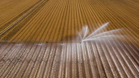 macchina per l'irrigazione delle colture vista aerea con sistema di irrigazione a perno centrale. Un perno di irrigazione che innaffia i terreni agricoli. Sistema di irrigazione che innaffia i terreni agricoli.
