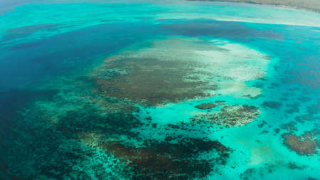 Sea water surface in lagoon with coral reef copy space for text. Top view transparent turquoise ocean water surface. background texture
