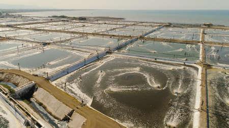 Garnelenfarm, Garnelenzucht mit Sauerstoffanreicherungswasser mit Belüfterpumpe in der Nähe des Ozeans. Luftbild-Fischfarm mit Teichen, in denen Fische und Garnelen und andere Meeresfrüchte wachsen. Fischbrutteich Luftbild Aquakulturgeschäft exportiert internationalen Markt. Java, Indonesien