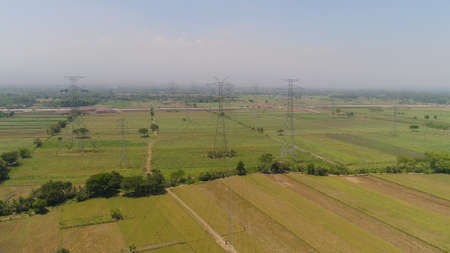 Electricity pylons bearing power supply across agricultural land with sown green, rice fields in countryside. aerial view power pylons and high voltage lines java, indonesia.High voltage metal post, tower. Electric Power Transmission Lines over trees. farmland with agricultural crops in rural areas Java Indonesia Фото со стока