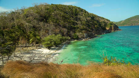 Beach on a tropical island with palm trees.. Malcapuya, Philippines, Palawan. Tropical landscape with blue lagoon.