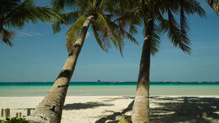 Tropical beach and palm trees on a background of blue sea and sky. Summer and travel vacation concept. Boracay, Philippines
