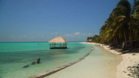Tropical island with beautiful beach, palm trees, Onok Island, Balabac, Philippines. Summer and travel vacation concept