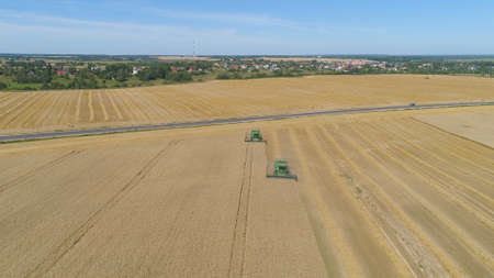 Combine harvester at work harvesting field wheat. Aerial view Combine harvester mows ripe spikelets, barley, rye. Combine harvester harvest ripe wheat on a farm. Stok Fotoğraf
