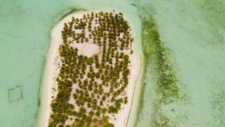 Tropical island with beautiful beach, palm trees and turquoise water view from above. Onok Island, Balabac, Philippines. Summer and travel vacation concept