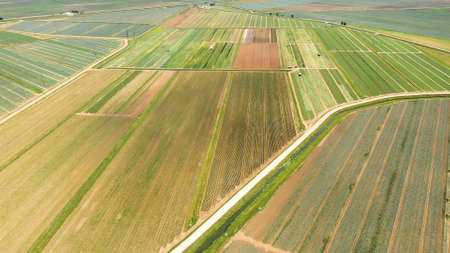 Agricultural land with with green crops and agricultural machinery top view. Countryside with farmland.