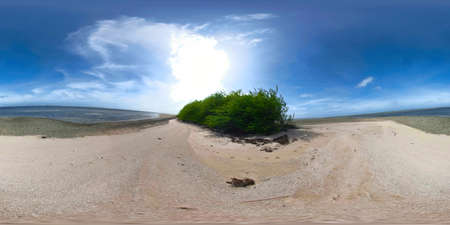 Wild sandy beach on a tropical island. 360 VR. Philippines. Summer and travel vacation concept.
