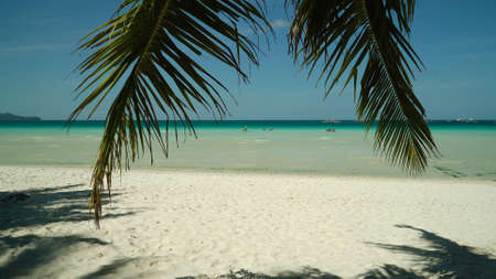 Travel concept: sandy beach and blue sea through palm branches. Summer and travel vacation concept. Boracay, Philippines Фото со стока