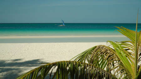 Tropical beach with tourists and clear blue sea through palm branches. Summer and travel vacation concept. Boracay, Philippines Zdjęcie Seryjne