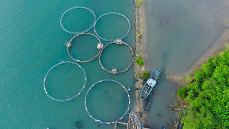 Fishing industry. Fish farming on an industrial scale. Aerial view of large scale traditional floating fish farms. Banque d'images
