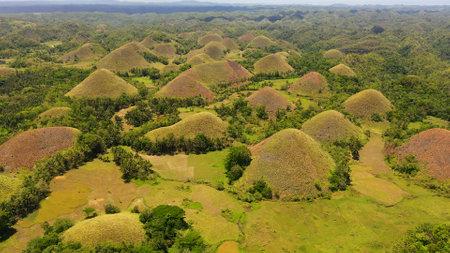 Amazingly shaped Chocolate hills on sunny day on Bohol island, Philippines.