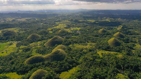 Famous Chocolate Hills natural landmark, Bohol island, Philippines. Hills among farmlands.