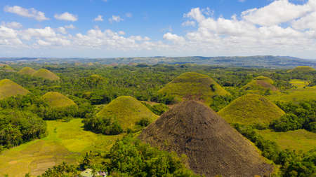 Chocolate Hills - one of the main attractions of the island of Bohol. Summer landscape in the Philippines.