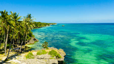 Beautiful tropical beach with white sand, palm trees, turquoise ocean. Bohol, Anda area, Philippines.