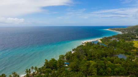 Tropical beach with sea and palm. Beautiful beach and tropical sea. Bohol, Philippines. Summer and travel vacation concept.