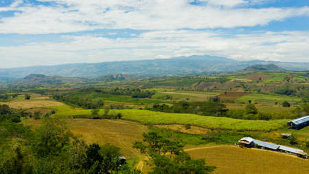 Tropical landscape: Agricultural land with plantings against a background of mountains and blue sky. Mindanao, Philippines.