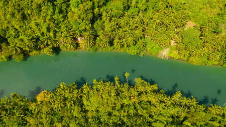 Aerial view of Loboc River in tropical green jungle. Bohol, Philippines. Reklamní fotografie