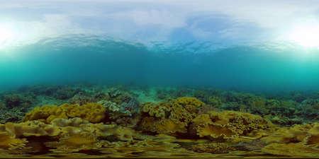 Underwater fish reef marine. Tropical colourful underwater seascape. Philippines. 360 panorama VR