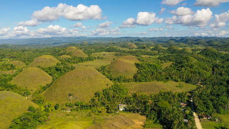 Scenic view on amazingly shaped Chocolate hills in Bohol island, Philippines. Stok Fotoğraf - 168137962