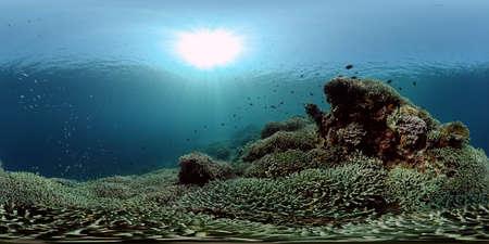 Colourful tropical coral reef. Scene reef. Marine life sea world. Philippines. Virtual Reality 360. Standard-Bild