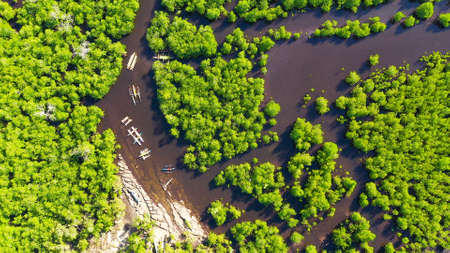 Mangroves in a swampy area on a tropical island. Mangrove landscape, Mindanao, Philippines. Standard-Bild