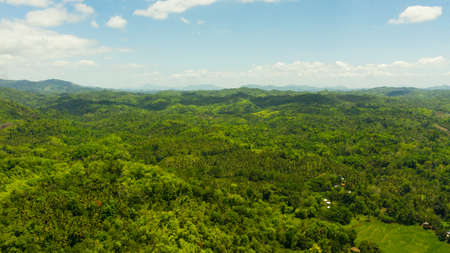 Mountains covered with jungle and rainforest on the island of Mindanao, Philippines. Tropical landscape in Asia.