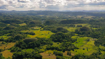 Natural formations known as chocolate hills.Bohol, Philippines, top view.