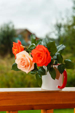 Fresh tender pink and red garden roses stand on wooden porch in glass on the background of a country house in soft-focus in the background.