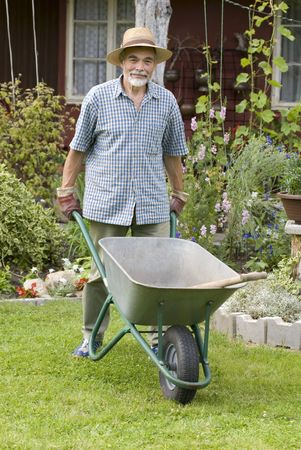 barrow: senior with a barrow in the garden