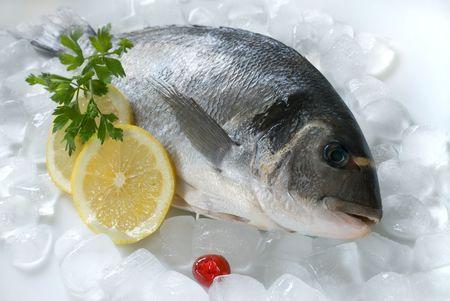 fisch eis: Eine Dorade (Sparus aurata) auf Eis