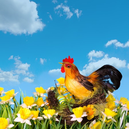 colorful easter hen in the nest on the meadow photo