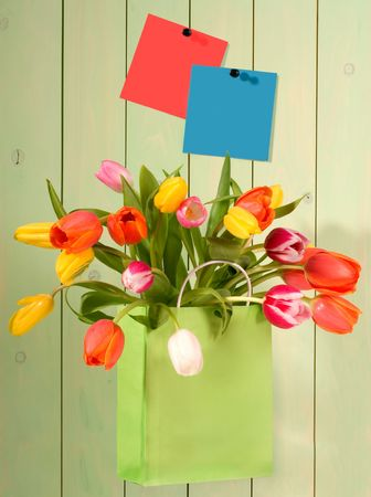 compliment: fresh tulips in shopping bag