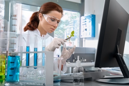 scientist working at the laboratory Stock Photo - 4986498