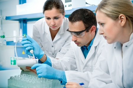 chemical laboratory: group of scientists working at the laboratory