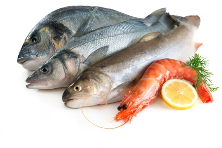 seafood dinner: Sea food Stock Photo