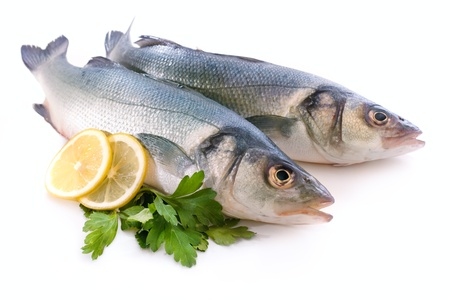 catch of fish: sea-bass Stock Photo