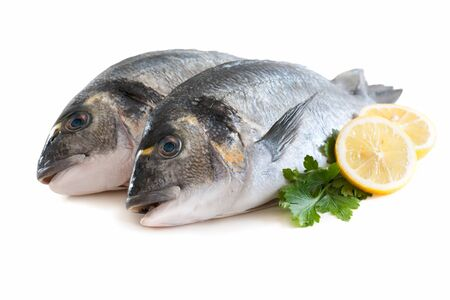 gilthead bream: fresh gilt-head isolated on white Stock Photo