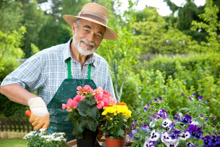 gardening gloves: Portrait of senior man gardening Stock Photo