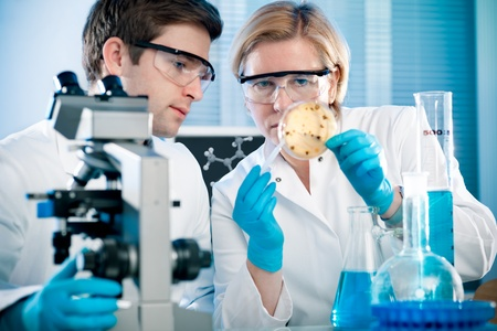 experiment: scientists working at the laboratory Stock Photo