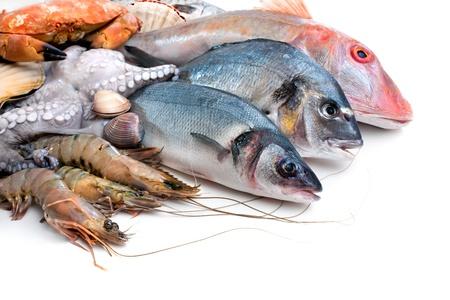 pescados y mariscos: Pescado fresco de los peces y otros mariscos Foto de archivo